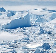 Artico russo